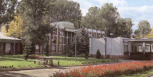 Palanački Kiseljak