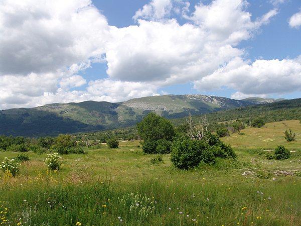 Golija-planina