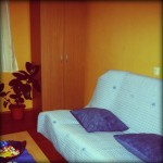 Lena apartman - Banja Vrdnik 1