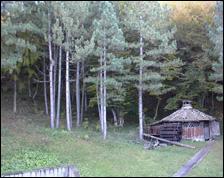 Tigar planinski dom – Stara planina
