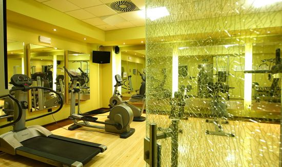 Hotel Holiday Inn Beograd - Fitness centar
