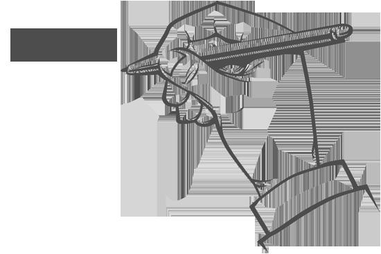 Plesni klub Aurora kontakt