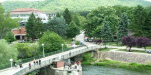 Gamzigradska Banja